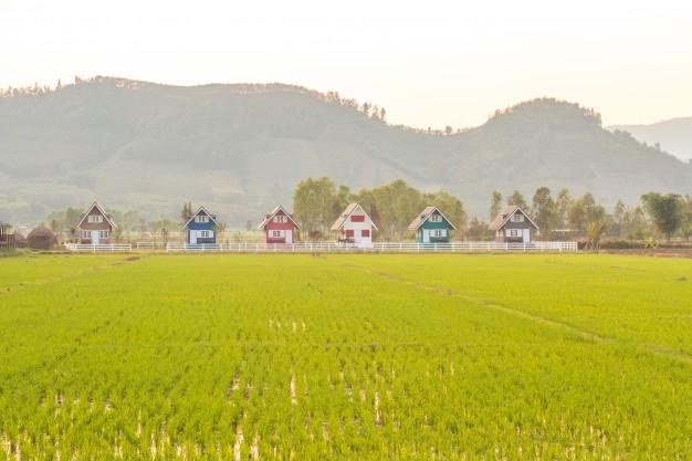 Zniesienie współwłasności gospodarstwa rolnego
